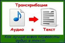 Транскрибация - расшифровка аудио- и видеозаписей в текст 17 - kwork.ru