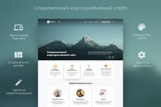Продвижение сайта или страницы ключевыми словами, через поисковики 22 - kwork.ru