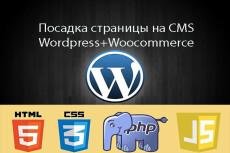 Помогу с сайтом на Wordpress, Diafan CMS 18 - kwork.ru