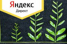 Настрою рекламную кампанию в директе 13 - kwork.ru