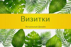 Визитки 16 - kwork.ru