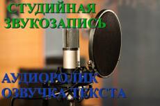 Запишу голосовое приветствие 19 - kwork.ru