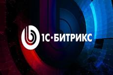 Доработка проектов на 1С Битрикс 5 - kwork.ru