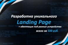 Адаптивный лендинг 20 - kwork.ru