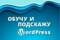 Обучение работе с Wordpress для начинающих 5 - kwork.ru