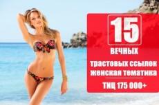 17 вечных ссылок с трастовых сайтов. Высокий тиц показатель 22 - kwork.ru