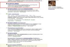 Выявлю и подскажу как устранить ошибки поисковой оптимизации сайта 11 - kwork.ru