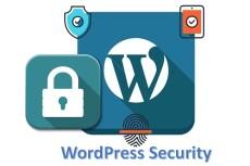 Установлю и настрою Wordpress на хостинг 10 - kwork.ru
