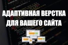 Перенесу ваш сайт на новый хостинг 24 - kwork.ru