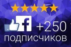 Добавлю 2000 вечных подписчиков на паблик в Facebook 19 - kwork.ru