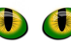 Три варианта логотипа 22 - kwork.ru