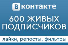 500 участников в вашу группу Facebook 25 - kwork.ru