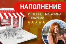 Добавлю в интернет-магазин 50 товаров 39 - kwork.ru