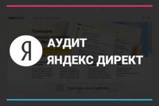 Аудит Вашего Я. Директ и сайта по 175 пунктам пригодности 12 - kwork.ru