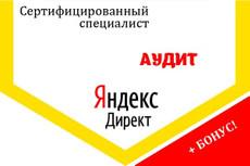 Профессиональная настройка Яндекс Директ. Сертифицированный специалист 7 - kwork.ru