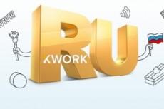Зарегистрирую домен и Премиум хостинг на 1 год 14 - kwork.ru