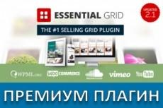 Премиум - плагины WordPress на русском с обновлениями 21 - kwork.ru