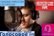 Озвучу текст, запишу мелодию 33 - kwork.ru