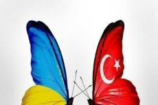 Профессионально переведу с Турецкого и на Турецкий 13 - kwork.ru