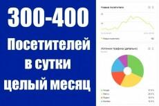 Посетители на сайт 1000 человек по ключевым запросам 7 - kwork.ru