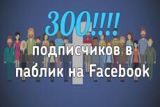 200 подписчиков с фильтрами в паблик Facebook. Не группа. Гарантия 16 - kwork.ru