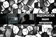 Инфографика и анимация для видео 30 - kwork.ru