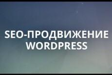 Настрою плагин Yoast SEO на WordPress 10 - kwork.ru