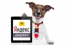 Эффективно настрою контекстную рекламу в Яндекс Директ + 11 % конверсии 16 - kwork.ru