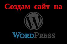 Установлю и настрою любой плагин и виджет на вашем сайте на Wordpress 7 - kwork.ru