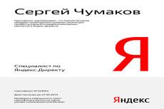 Настройка Яндекс Директ. Сертифицированный специалист 26 - kwork.ru