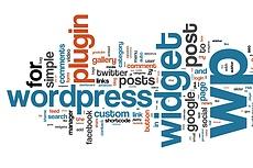 Оптимизирую ваш сайт на Wordpress 15 - kwork.ru