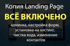 Копия лендинга за 1 час, с установкой на ваш хостинг 9 - kwork.ru