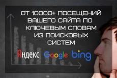 Приведу 1500 целевых посетителей 10 - kwork.ru