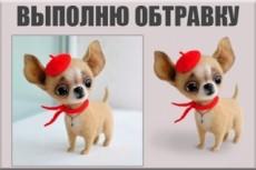 Обтравка фото, замена фона 16 - kwork.ru