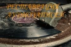Запишу голос для песни. Придумаю вокальную партию. Опыт 8 лет 29 - kwork.ru