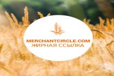 Сервис фриланс-услуг 84 - kwork.ru