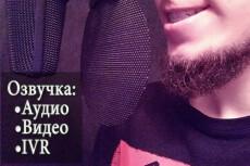 Сделаю дикторскую начитку 34 - kwork.ru
