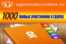 1000 +100 живых участников в группу Одноклассники 21 - kwork.ru