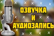 Озвучка любого текста на профессиональный микрофон за 30 минут 14 - kwork.ru