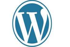 Помощь Wordpress 29 - kwork.ru