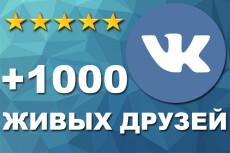 +300 соц. сигналов на страницу сайта. Живые люди ВК, ОК, FB, TW 19 - kwork.ru