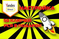 Профессиональная настройка Яндекс. Директ. Поиск. РСЯ. Ремаркетинг 17 - kwork.ru