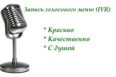 Автоответчик, IVR, голосовое меню 10 - kwork.ru