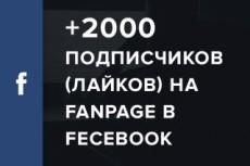 Добавлю 3000 подписчиков на паблик FanPage в Facebook 11 - kwork.ru