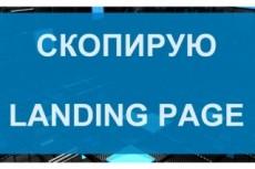 Создание копии одностраничных сайтов - Landing Page 16 - kwork.ru