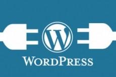 Переведу и почищу шаблон Wordpress 21 - kwork.ru