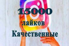 10000 подписчиков в Инстаграм + 5 000 лайков 12 - kwork.ru