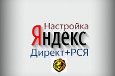 Настрою Яндекса Директ (Поиск + РСЯ) 23 - kwork.ru