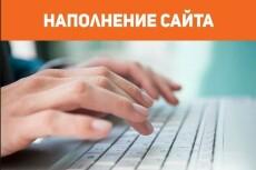 Добавлю в интернет-магазин 50 товаров 6 - kwork.ru