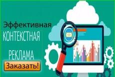 Сделаю успешную рекламную компанию в Яндекс.Директ, Поиск и РСЯ 20 - kwork.ru